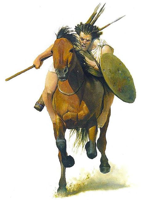What was the result of the punic wars