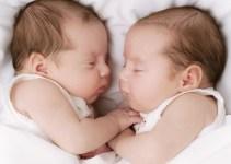 Bayi Kembar 2