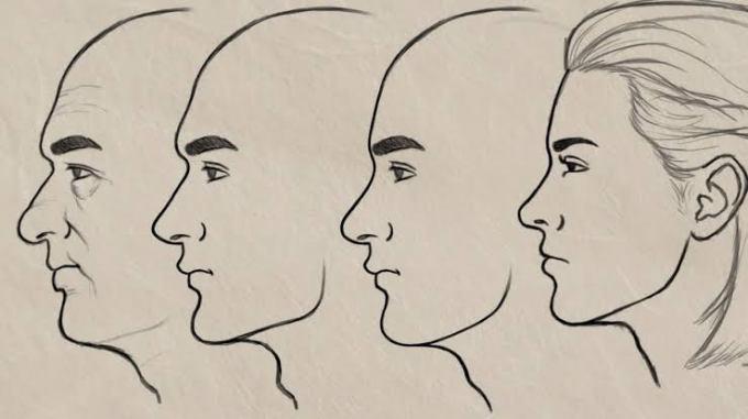 Sketsa wajah manusia dari samping