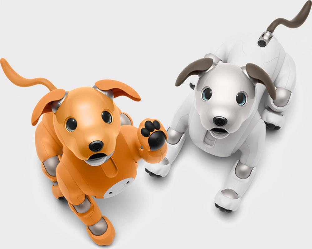 pair Sony機器狗aibo換上限定焦糖新色,攜手SECOM增加居家巡邏功能