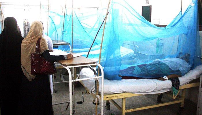 Woman dies of dengue virus