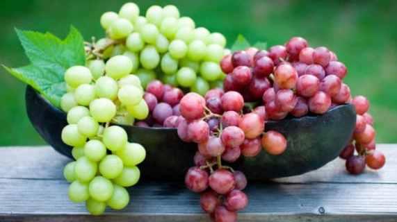 grapes 625x350 61443376353