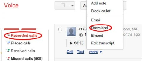 Google Voice Record Download