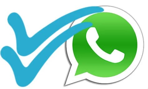 How to See WhatsApp Message Delivery & Read Status? | Mashtips
