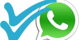 whatsapp message ticks