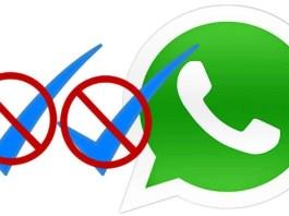 Hide Blue Tick WhatsApp