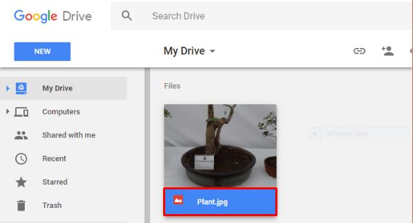 Google Drive File Ext Rename