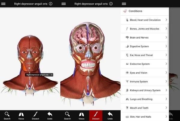 android BioDigital Human - 3D Anatomy
