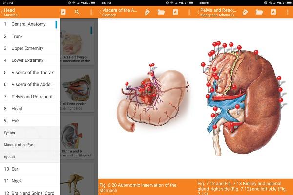 android sobotta anatomy atlas