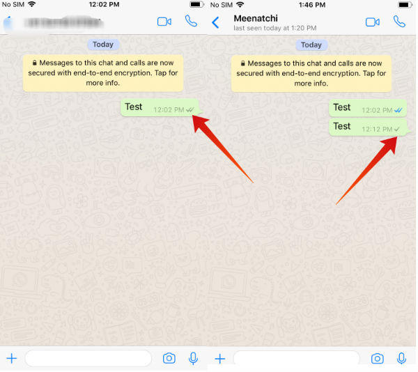 iPhone Whatsapp message delivery status