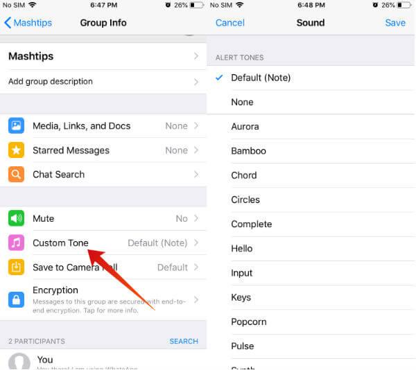 iphone whatsapp custom notifications