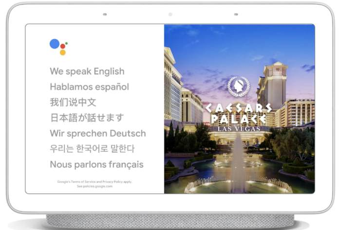 Google Interpret Mode on Google Home - Google Home Language Skills
