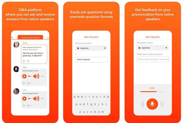 HiNative language learning app