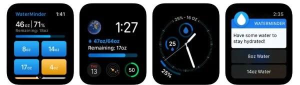 WaterMinder app for Apple Watch