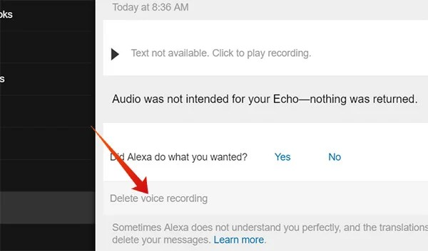 Delete Individual Voice Recording from Web