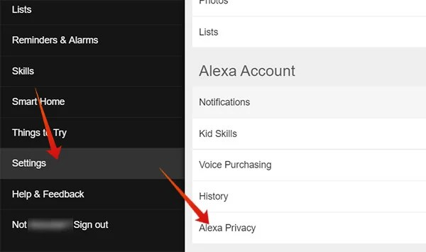 Enter Alexa Privacy from Alexa Settings