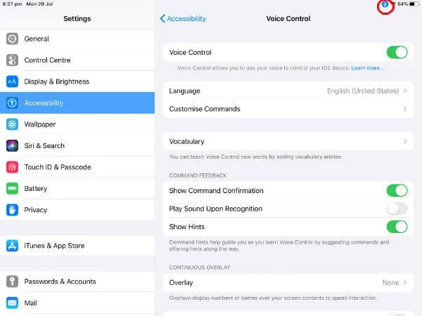 iPad voice control menu