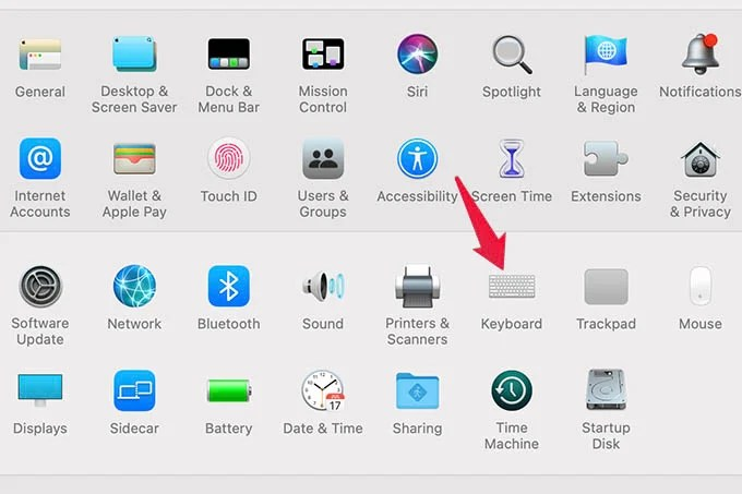 Keyboard Preferences in MacBook