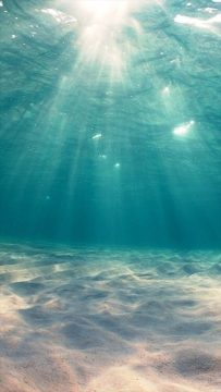 Sunshine Undersea cool iphone wallpapers   Mashtrelo Sunshine Undersea cool iphone wallpapers