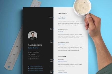 25 Best Free Simple Resume Templates for 2018 vertical resume template free download