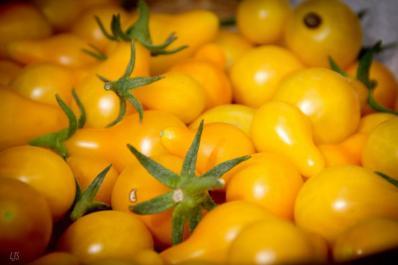 Curiosos tomatitos