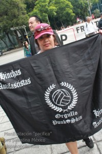 Manifestacion propalestina Mexico 0021