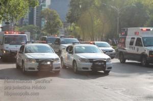 Manifestacion propalestina Mexico 0100