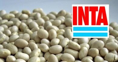 +info24 | +Industrias