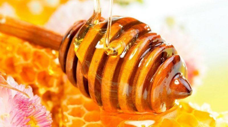 Desarrollaron la Semana de la Miel con charlas en colegios y degustaciones en toda la Provincia