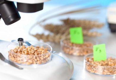 Laboratorios de calidad de alimentos pampeanos