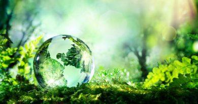 Se creará en Argentina un programa de Sustentabilidad Ambiental