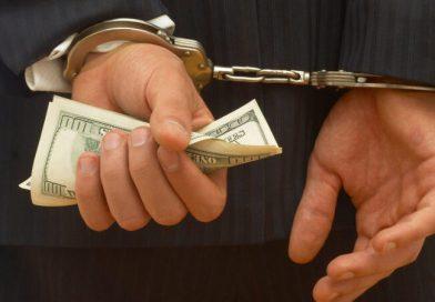 Fraudes y negocios: diferencias entre una estafa Ponzi y una multinivel