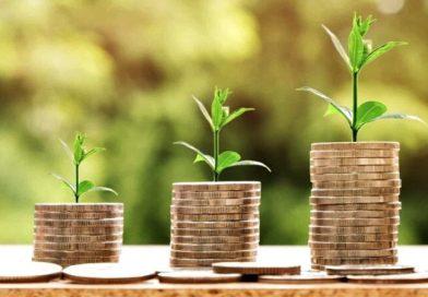 """GMB Coin: la criptomoneda verde que apuesta al """"capitalismo ambiental"""""""