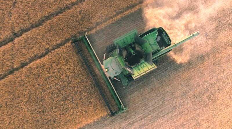 Traspaso o cambio generacional en empresas del agro