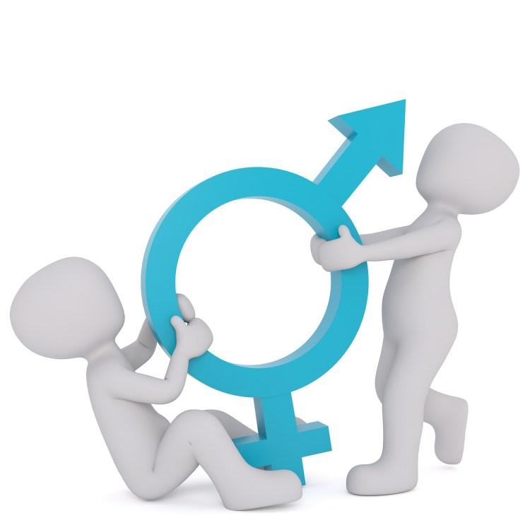 Maskulinism - problemet med manliga feminister
