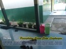 SD Negeri 02 Tanjung Purwokerto (3)