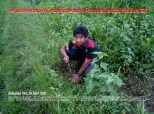 Pemuda Pancasila PAC Patikraja Banyumas Menanam Tanaman di Desa Patikraja Bersama Komunitas Wong Apa Memperingati Hari Bumi 2016 (34)