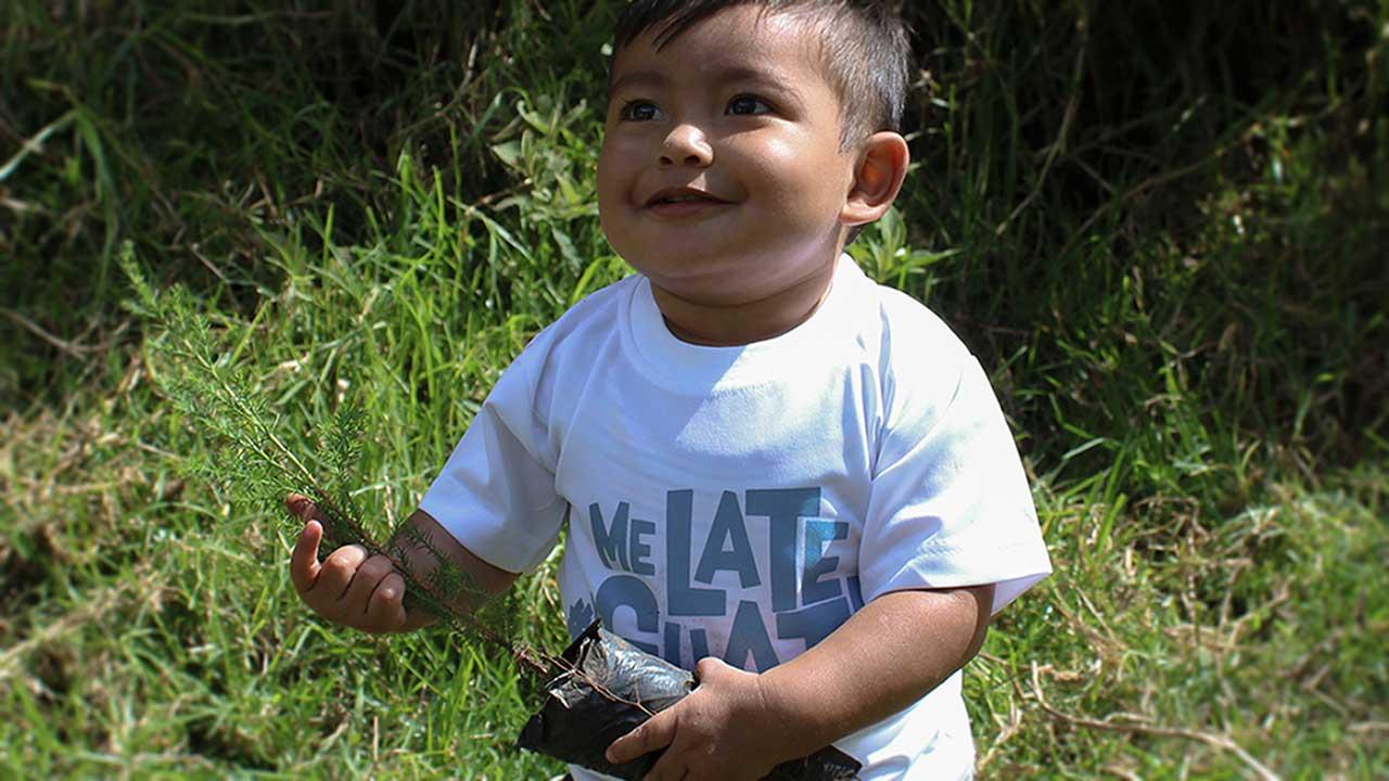 En ett-pojke med ett träd som ska planteras i Guatemala.