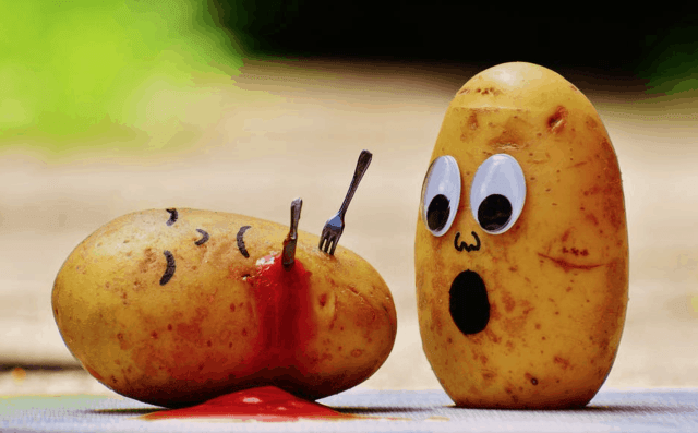 potato murder fat loss