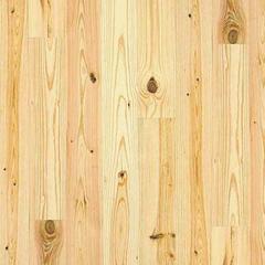 Knotty Pine Image