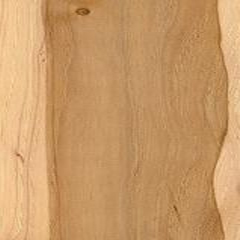 Pecan Plywood Image