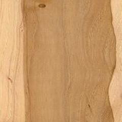 Pecan Plywood Image