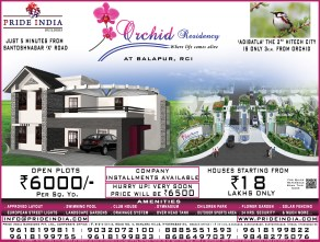Orchid Half Page-09-02-14