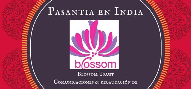 Pasantía en India: Comunicaciones & recaudación de fondos – Blossom Trust
