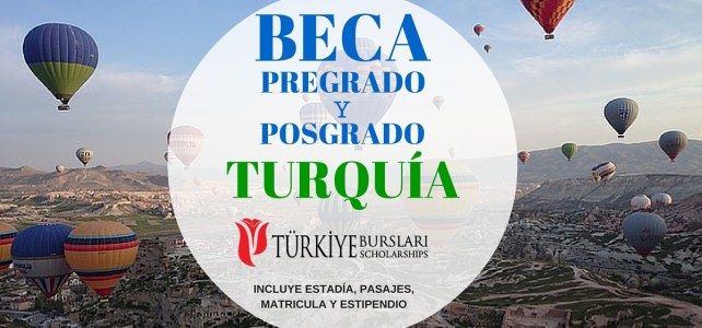Becas de pregrado y posgrado en Turquía