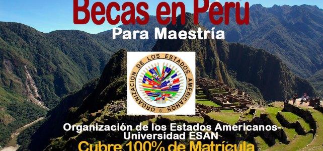 Becas para estudiar MBA internacional en Perú – master internacional