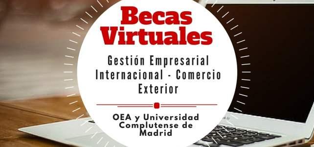 Becas de la OEA para maestrías virtuales