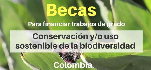 Becas del Fondo Colombia Biodiversa para financiar trabajos de grado e investigaciones