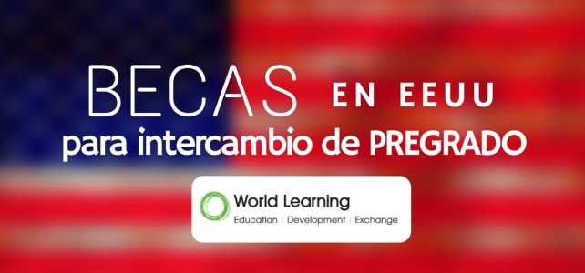 Becas de intercambio para pregrado en Estados Unidos