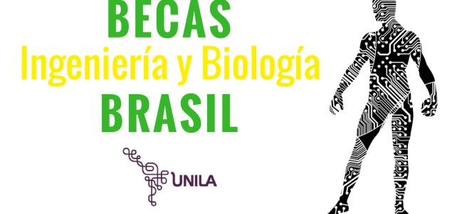 Becas en Ingeniería y Biología en Brasil